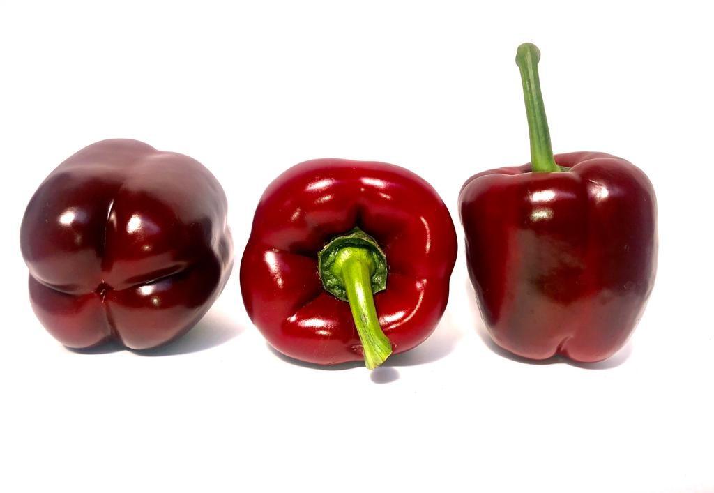 Pimientos disposicion agrosemillas genetic